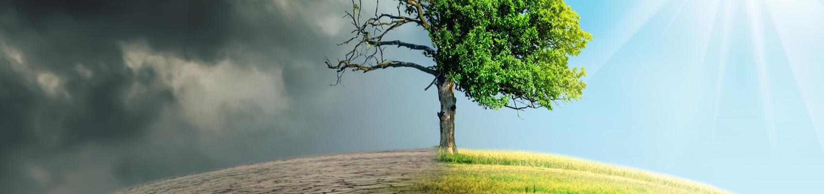 Sostenibilita E Benessere Iss
